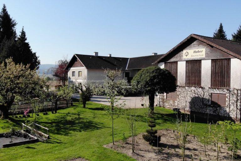 Baumschule Huber in Pittersberg bei Amstetten