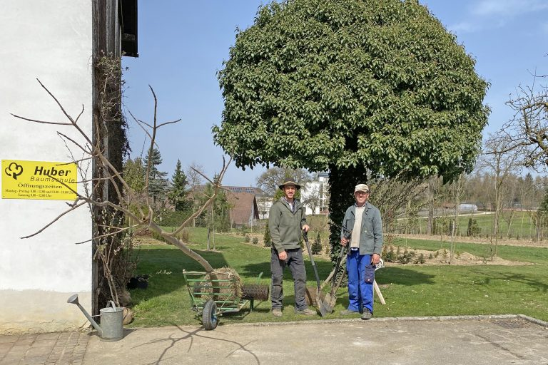 Paul und Franz Huber in der Baumschule in Amstetten