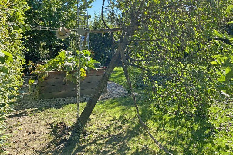 Obstbaum-Rettung