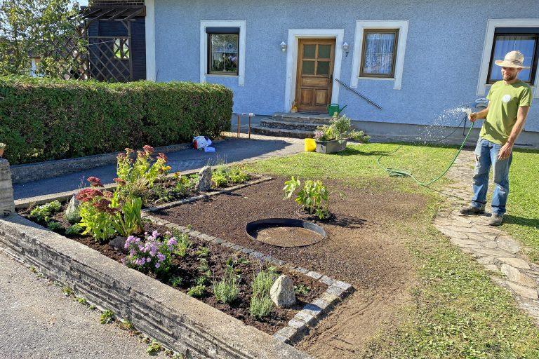 Vorgarten Bepflanzung