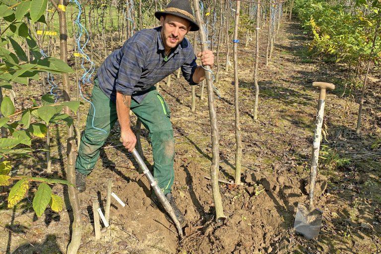 Paul beim Bäume graben