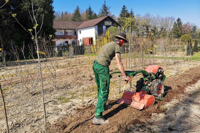 Arbeiten in der Baumschule Huber
